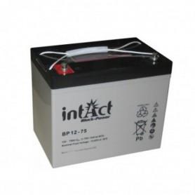 Intact 12V 75Ah