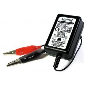 4S 14.6V polnilnik za 12V LiFePO4 akumulatorje in sklope